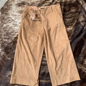 The Limited Faux-Suede Pants
